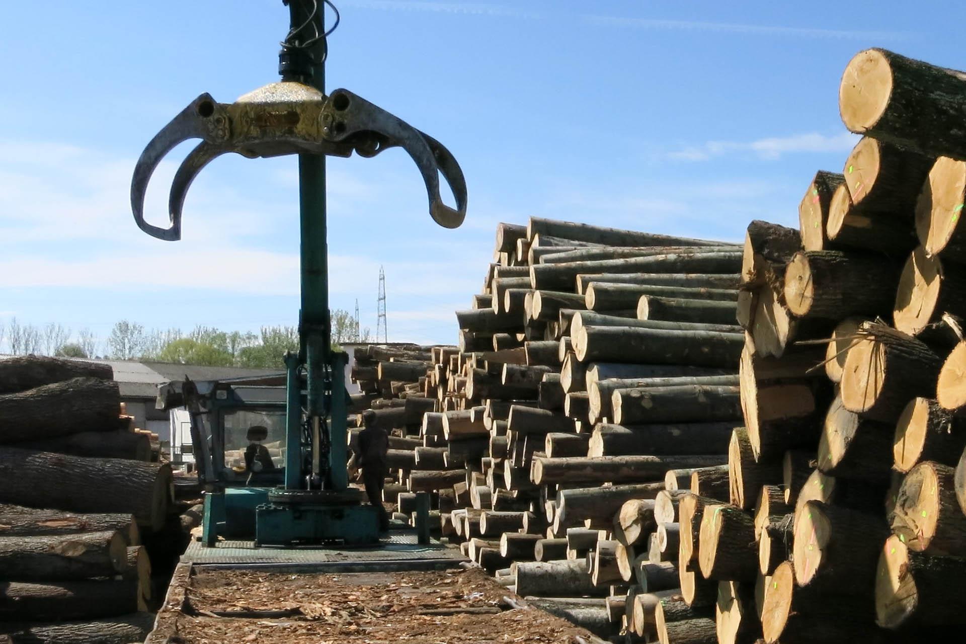 Holzhandel Wagner img 3568 1 jpg